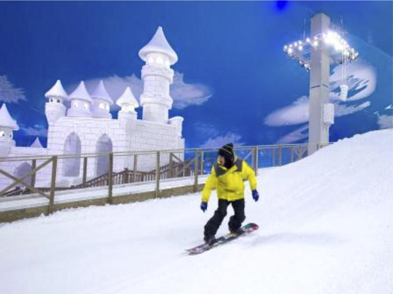 1 Snowland